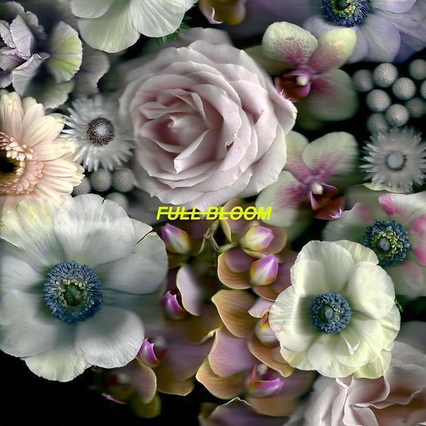 Alpines - Full Bloom – Глубокие тональности инди-попа