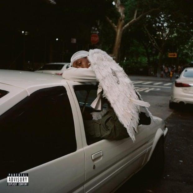 Blood Orange - Negro Swan – Деликатный R&B