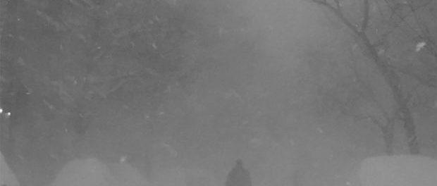 Cashmere Cat — Wild Love — Зарождение нео-R&B