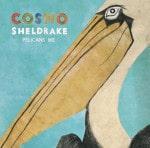 Cosmo Sheldrake - Pelicans We EP