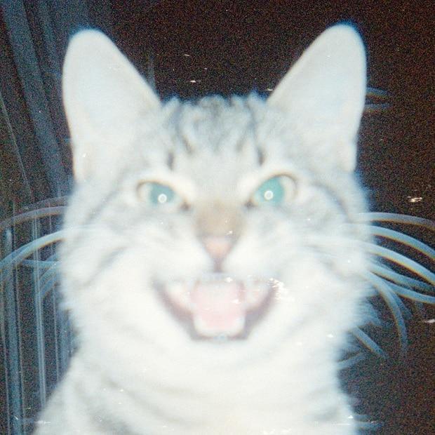 Local Suicide feat. Nicki Fehr — Leopard Gum (EP) — Пост-диско синтетика
