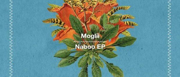 Moglii — Naboo — Органичная электроника