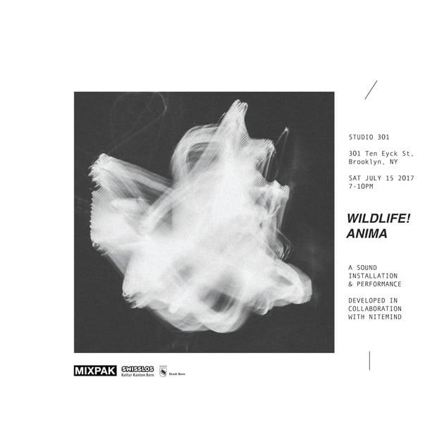 WILDLIFE! – Anima –Электронный абстракционизм