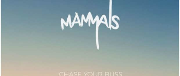 Mammals — Chase Your Bliss (EP) — Глубина инди-электроники