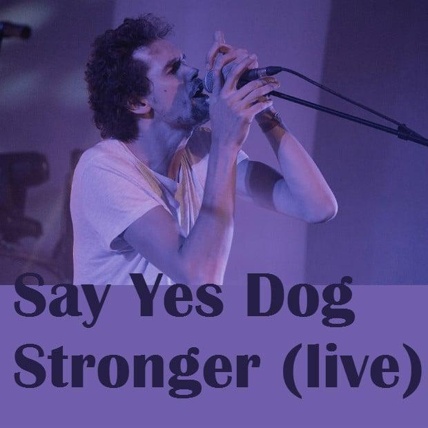 Say Yes Dog - Stronger (live)